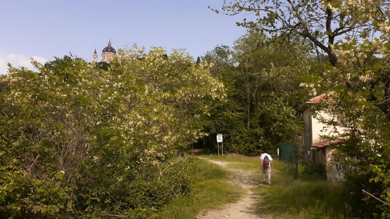 Collina di Superga - Parco naturale