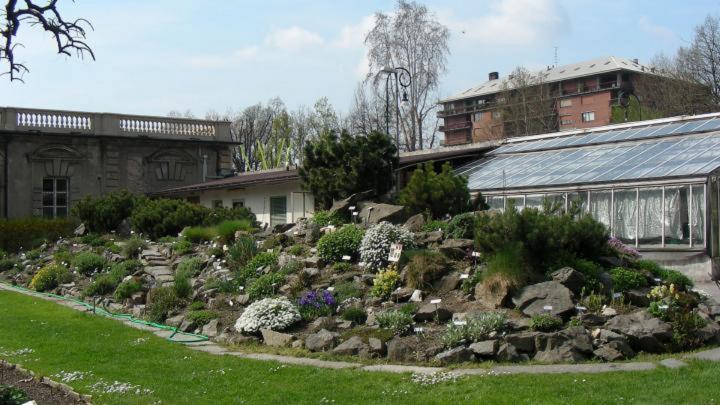 Orto botanico di Torino, botanico, orto